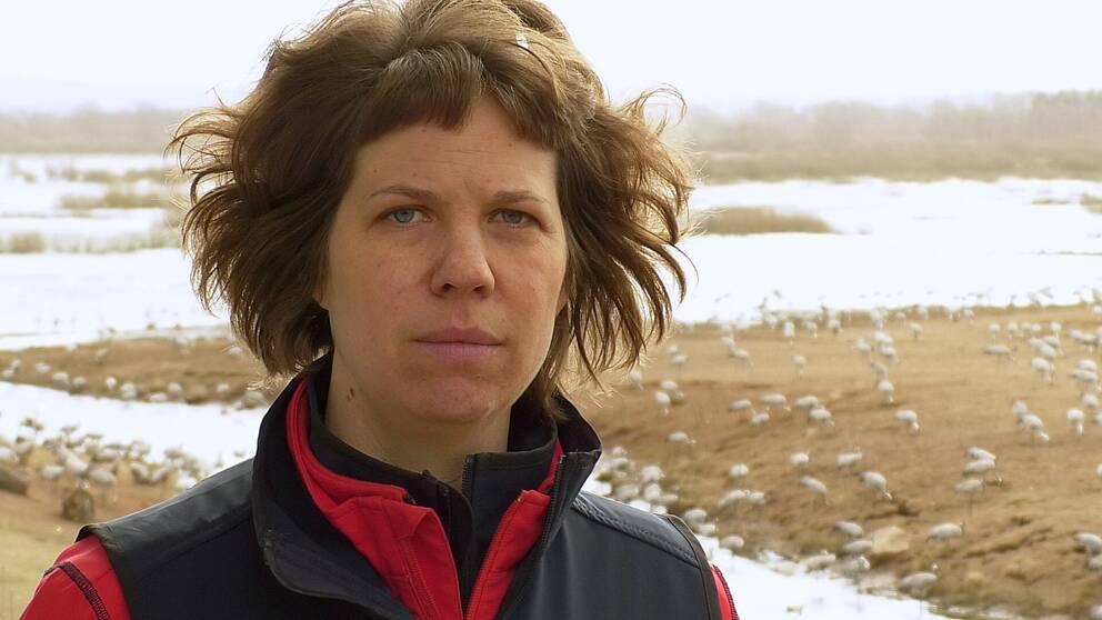Sofie Stålhand, Naturumföreståndare, framför fält med tranor