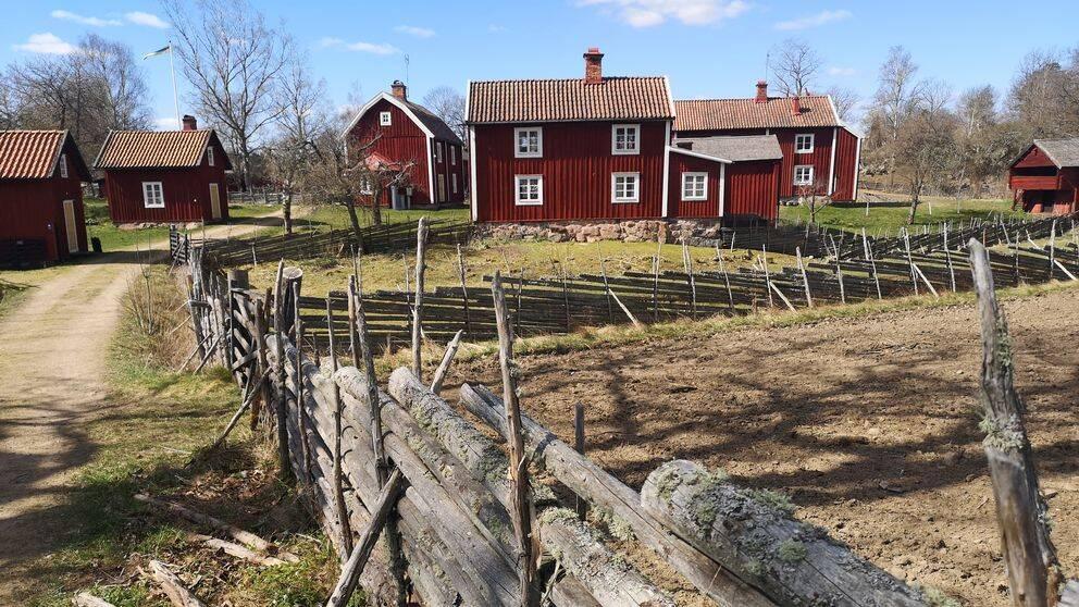 Stensjö by utanför Oskarshamn har varit ett populärt besöksmål under coronavåren 2020 och haft ovanligt många besökare redan i mars månad.