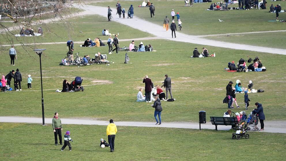 Grupper av människor vistas i Rålambshovsparken i Stockholm i april 2020.