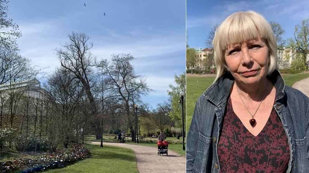 Till vänster Trädgårdsföreningen under våren och till höger Linda Nygren, direktör Park-och naturförvaltningen Göteborgs stad.