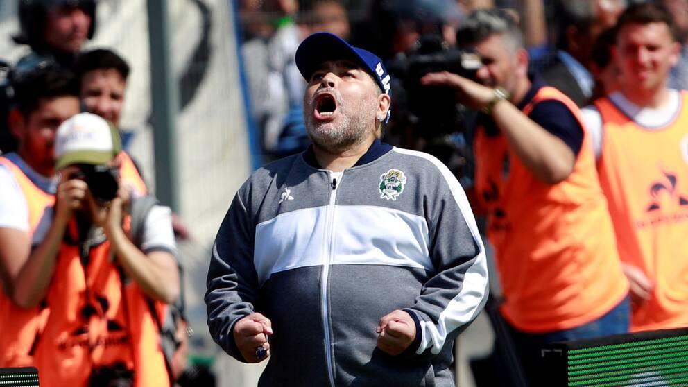 Diego Maradona jublar under en ligamatch i september.