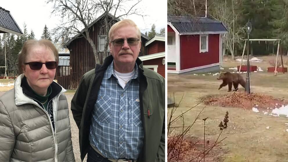 porträtt på ett äldre par ute på sin gård, samt bild på björn på gården, vårvinter