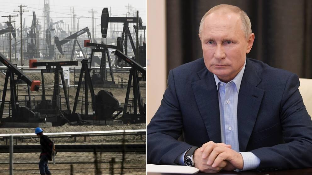 Krönika: Om levnadsstandarden i Ryssland börjar sjunka när ojleinkomsterna sinar – är det då Putins fel? Arkivbilder på Putin och ett oljefält.