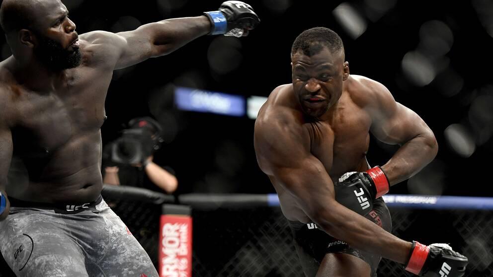 Francis Ngannou, Kamerun, knockade motståndaren Jair Rozenstruik, Surinam, vid nattens UFC-gala.