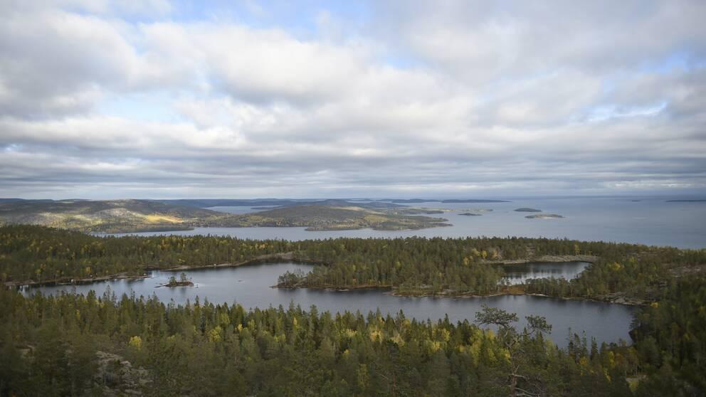 Vy över Skuleskogens nationalpark