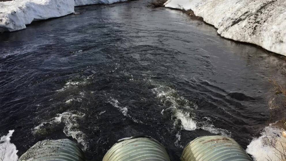 vatten strömmar ur re vägtrummor, smältande snövallar längs kanterna på vattendraget