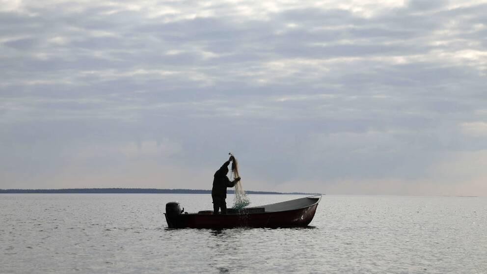 Åke Åström fiskar från en båt på öppet hav i Luleå skärgård