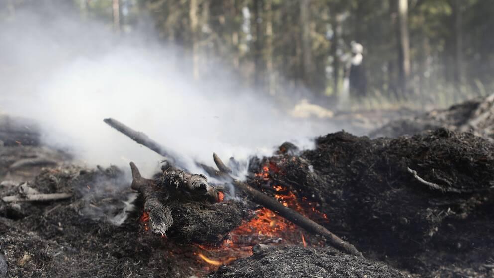 SMHI varnar för extremt stor risk för att bränder sprids i Örebro län.