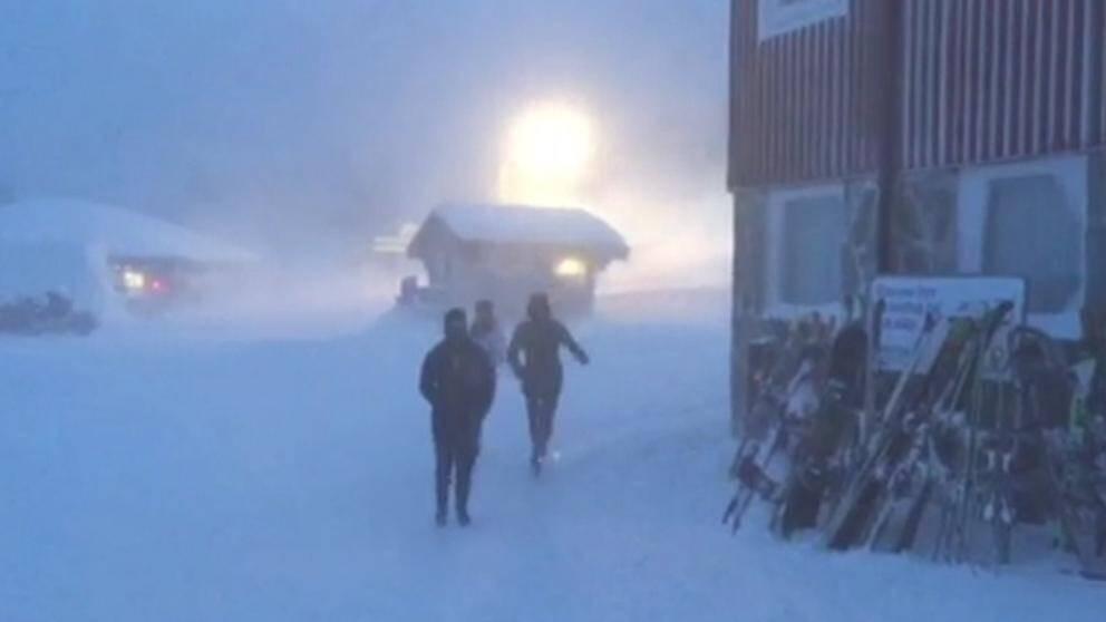 Snudd på snöstorm i Kittelfjäll i södra Lapplandsfjällen på eftermiddagen den 7 februari, och då hade vinden ännu inte kulminerat.