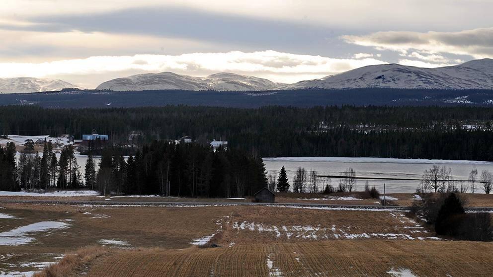 Februarivärmen gick hårt åt snötäcket i delar av jämtland. Så här såg det ut i Kvitsle den 28 februari.