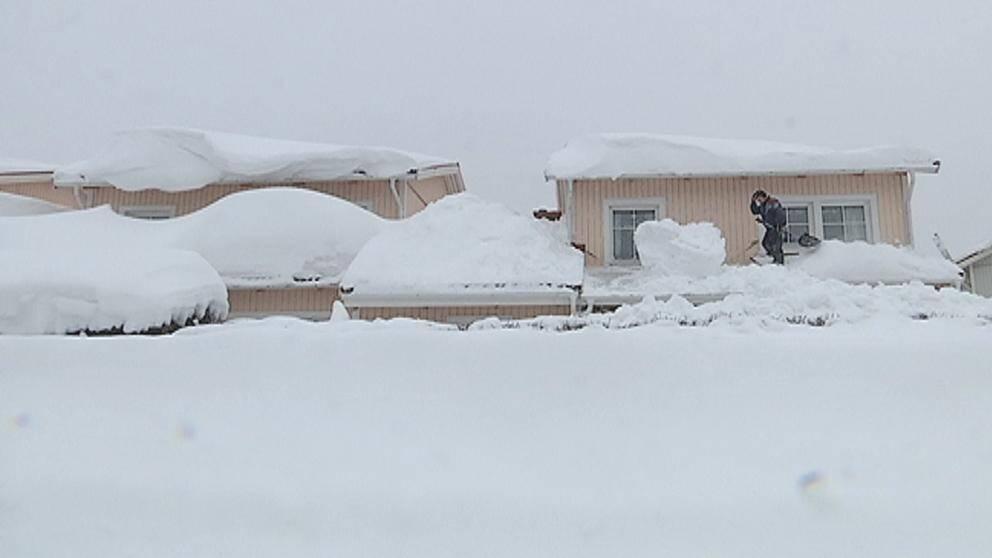 Snö i massor i Norrbotten i början av februari, som här i Luleå den 2 februari.