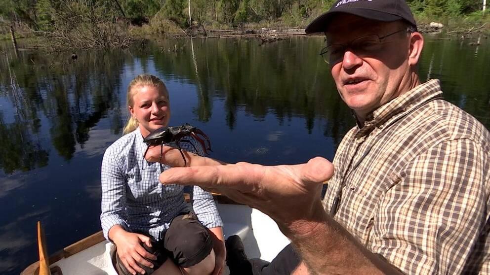 Ekoxe sitter på ett finger i förgrunden. Louise Åkerstedt och Björn från Sveaskog