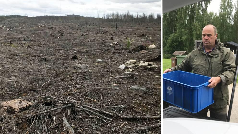 Bilden är ett collage med lodrät avskiljare. Vänster del: Ett grått brandhärjat landskap. Höger del: Foto på Marco Hassoldt som lastar en bil.