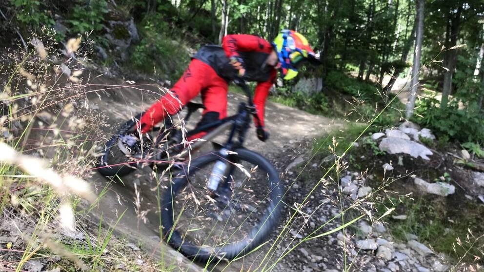 En downhillcyklist på en skogsled.