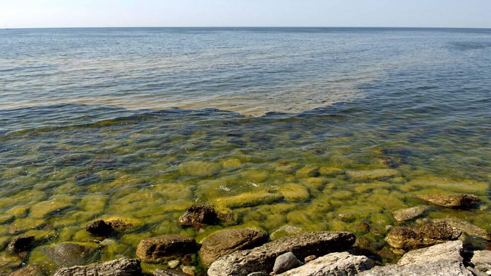 Östersjön. Foto: Scanpix