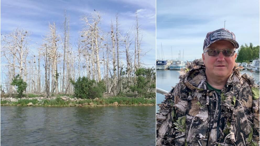 Man står i båthamn med kamouflagekläder. Ö med döda träd och skarvbon.