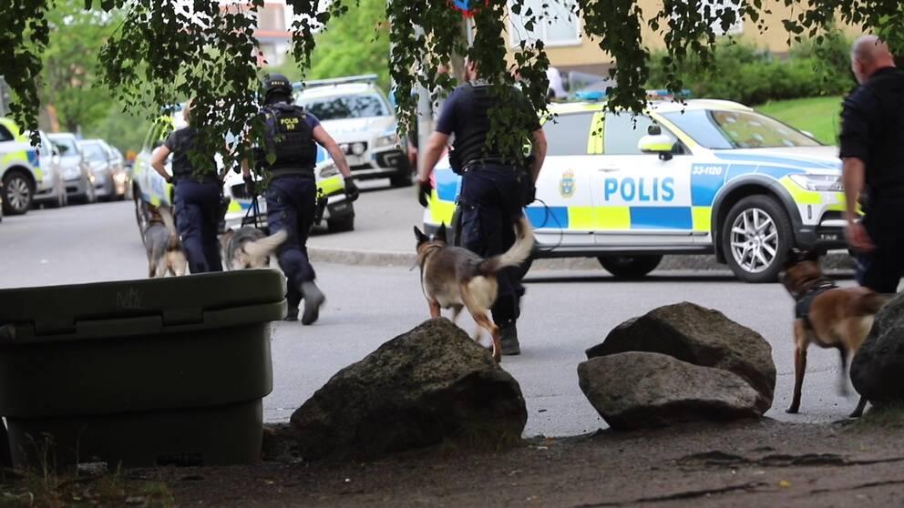 Poliser med polishundar i Rinkeby.