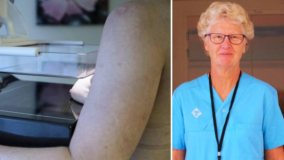 Kerstin Elmberg, mammografi Blekinge