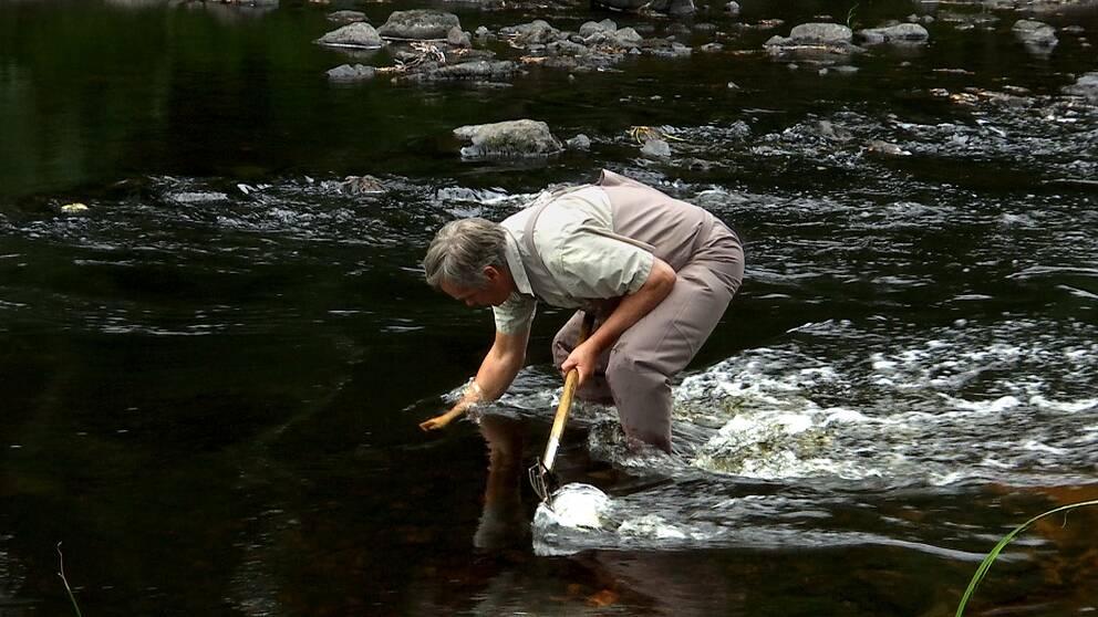 En man står i ett vattendrag och har en hand under vattnet.