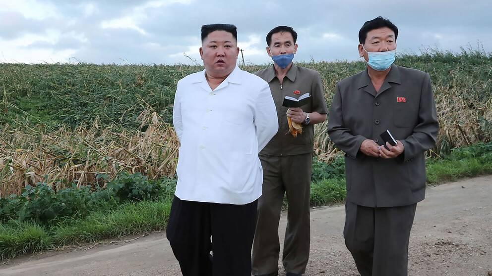 Senaste bilden av Nordkoreas ledare Kim Jong-Un som distribuerats av statliga nyhetsbyrån KCNA. Kim uppges besöka Södra Hwanghae-provinsen som drabbats av tyfoner.