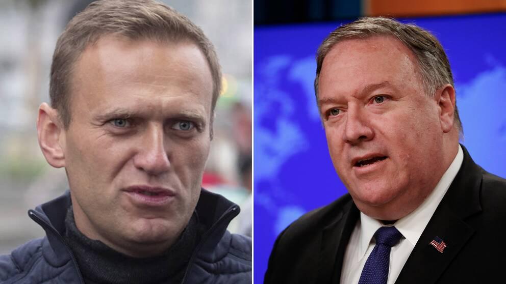 Det finns en stor risk att Moskva ligger bakom förgiftningen av oppositionspolitikern Aleksej Navalnyj, säger USA:s utrikesminister Mike Pompeo i en radiointervju. Bilden visar Aleksej Navalnyj och Mike Pompeo.