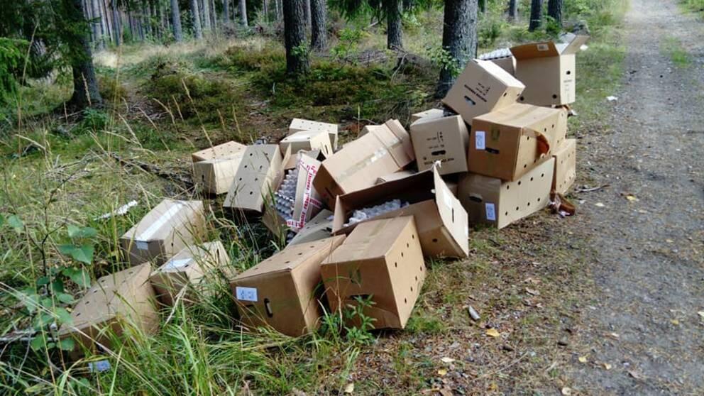 Ett stort antal kartonger med äggplattor i ligger vid vägkanten i skogen.