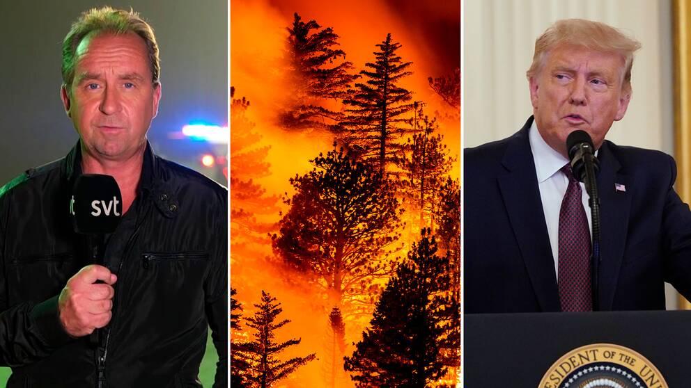 Stefan Åsberg, SVT:s USA-korrespondent och USA:s president Donald Trump