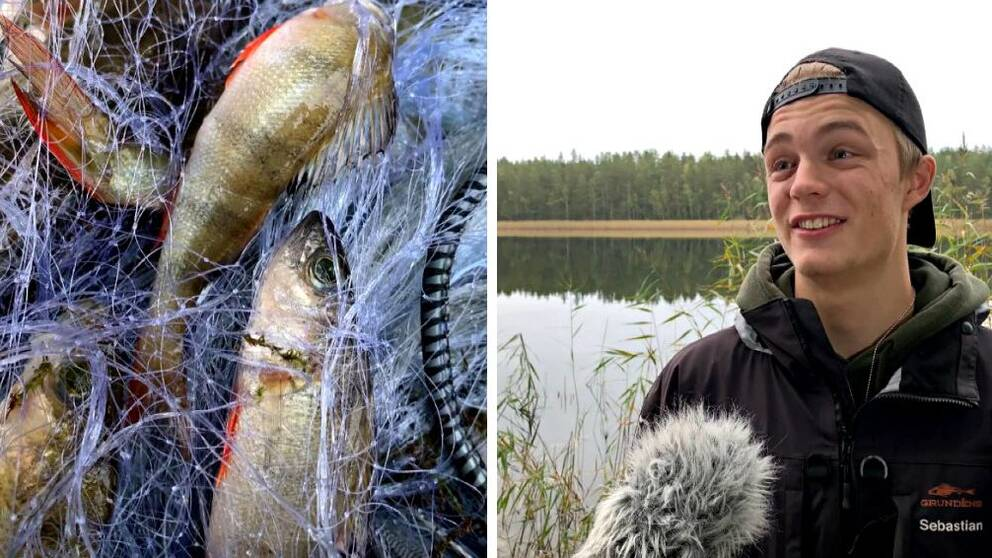 Hör tredjeårseleven Sebastian Sjöö berätta mer om provfisket.