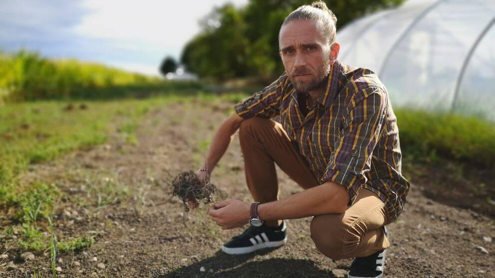 Michael Henells odling av industrihampa beslagtogs i sin helhet av polisen. Nu har han anmält polisen för tjänstefel.