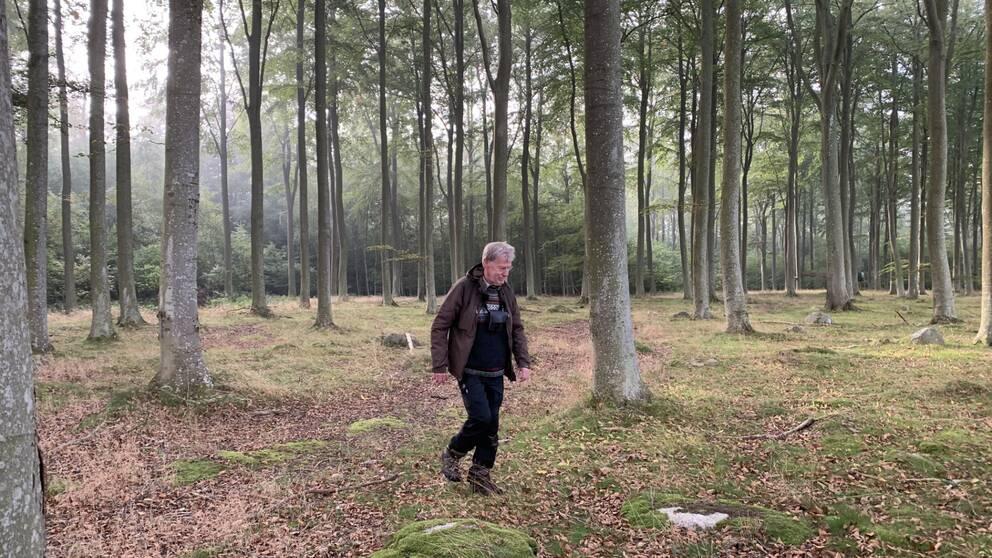 Man promenerar i Tursköpsskogen