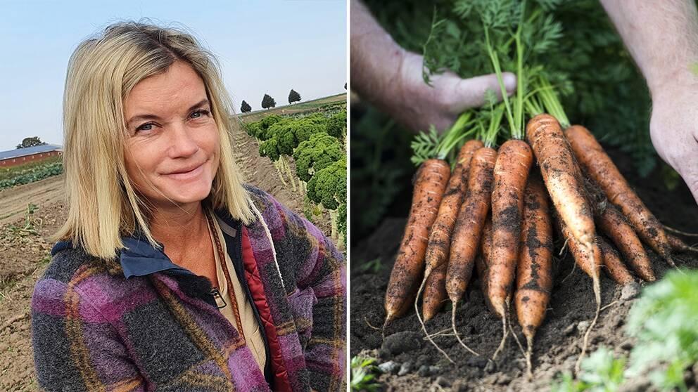 I klippet ger grönsaksodlare Magdelena Hermelin tips på hur du kan förlänga odlingssäsongen under hösten.