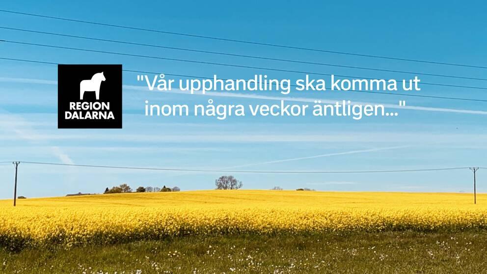 Långt innan de andra anbudsgivarna informerades fick Vårdinnovation veta att en upphandling var på gång i Region Dalarna. Det visar mejlväxling som SVT tagit del av.