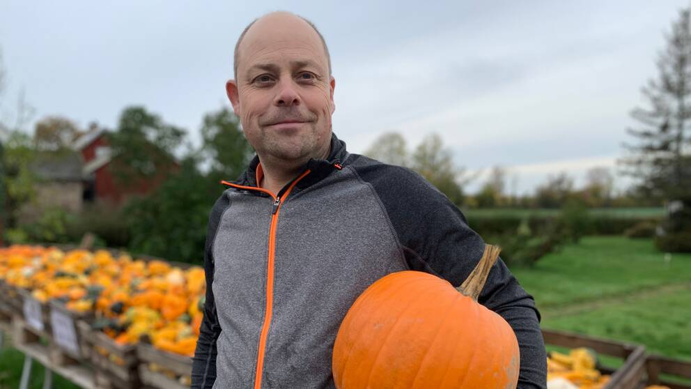 Jonas Nilsson i Eriksöre är pumpaodlare.