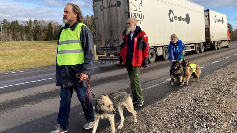 Tre personer och tre hundar går längs med en bilväg.