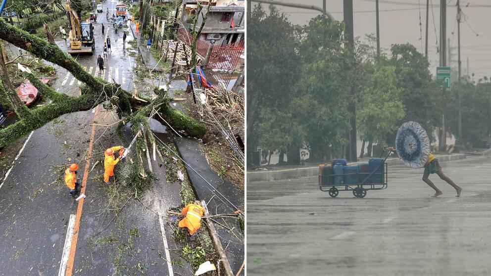 Tyfonen goni