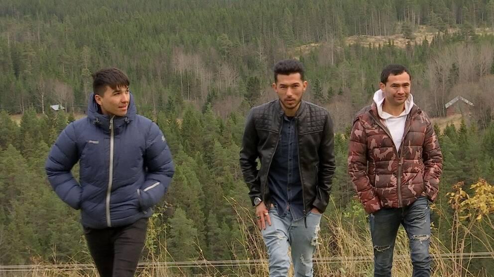 tre killar på promenad i Åre, skog och stugor i bakgrunden