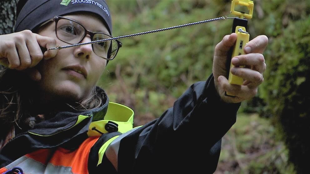 Ung kvinna står i skogen med ett relaskop i händerna (en gul plastsak med en kedja). Kvinnan har glasögon och en mössa med texten Skogsstyrelsen på. Hon har en svart och gul/orange jacka.