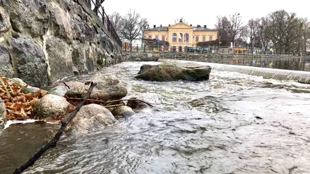 Faunapassagen i centrala Västerås