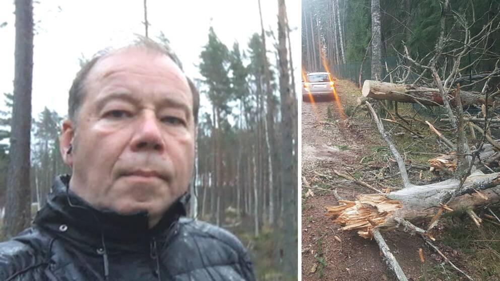 en man och en skog