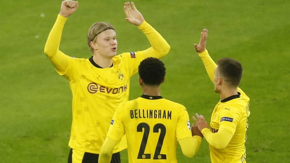 Braut Haaland jublar efter 3–0 mot Club Brügge.