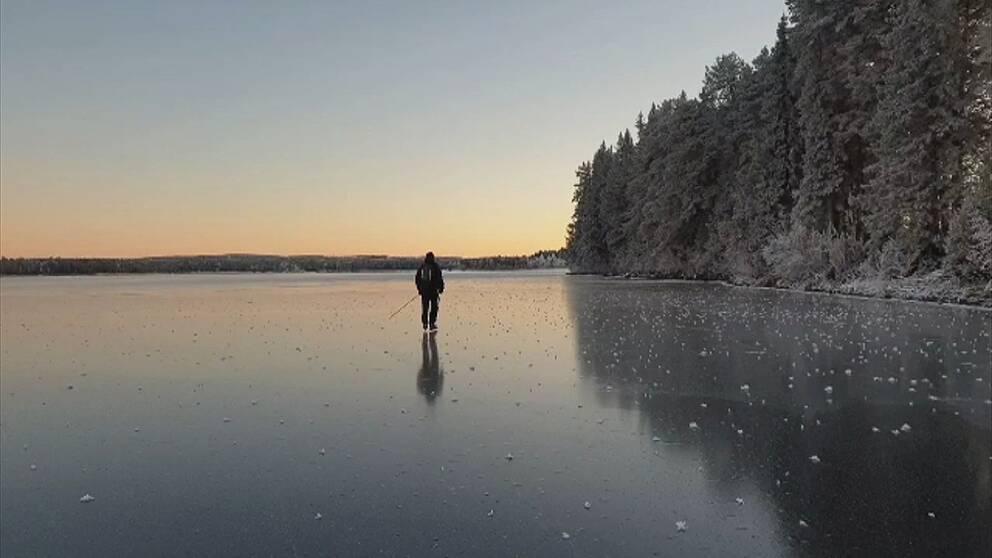 Bild på skridskoåkare på en blank is. Skymning och till häger en skogsridå med rimfrost.