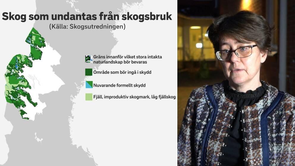 """Dubbelbild. Till vänster karta över Jämtlands län med en grönfärgade områden i väster. Rubriken är """"Skog som undantas från skogsbruk"""". Till höger bild på en mörkhårig kvinna med glasögon. Hon har en rutig jacka på sig."""