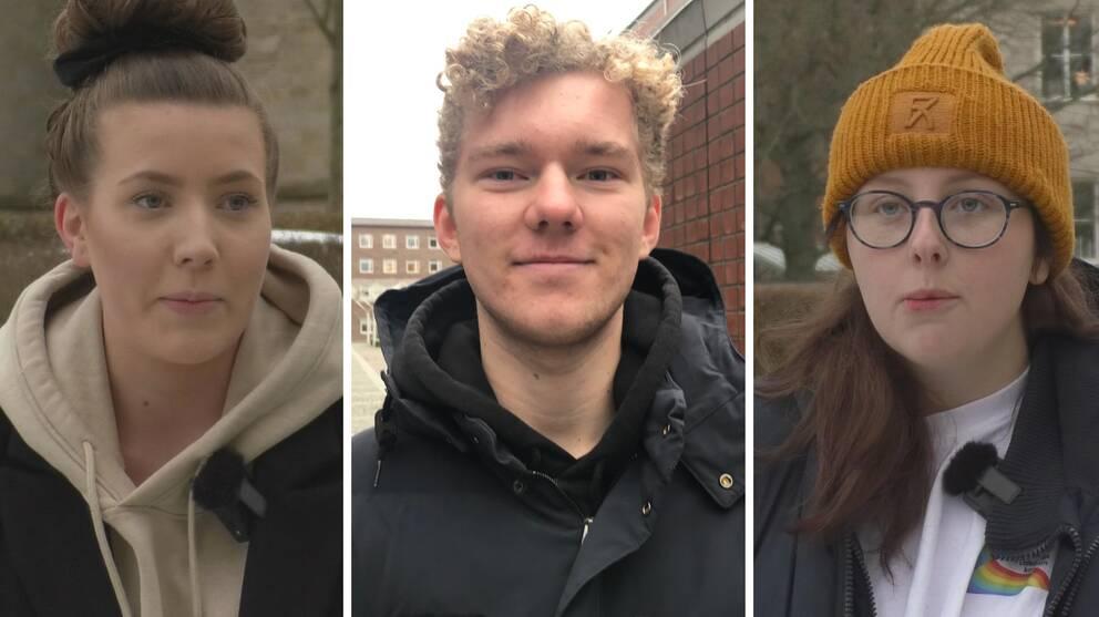 Elever från Skara och Göteborg berättar om svårigheterna med distansundervisning.