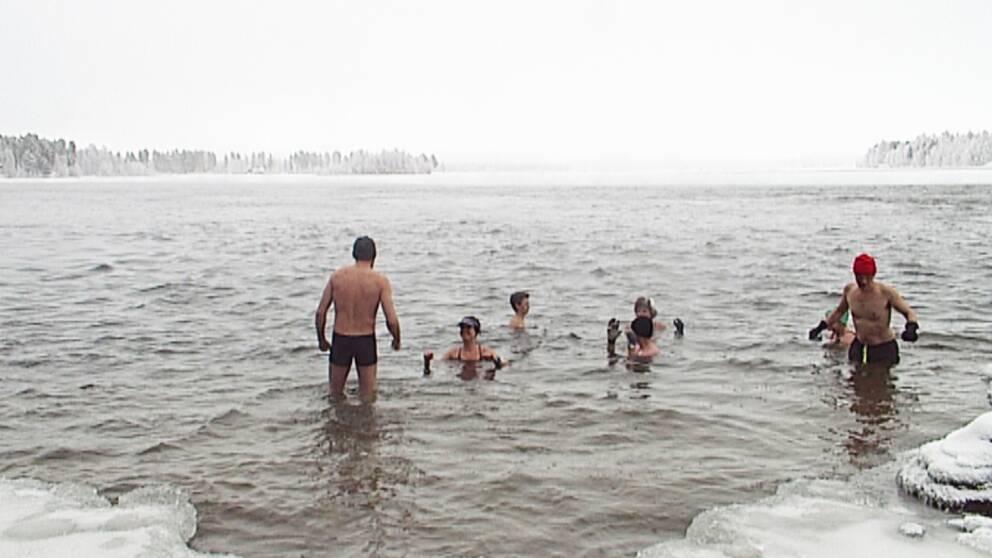 Flera personer som badar ifrån istäckt strand, snöig skog bortanför vattnet