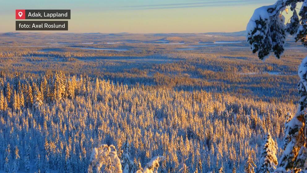 Vacker utsikt. Adak i Lappland den 5 januari.