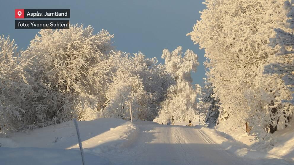 Aspås, Jämtland den 9 januari.