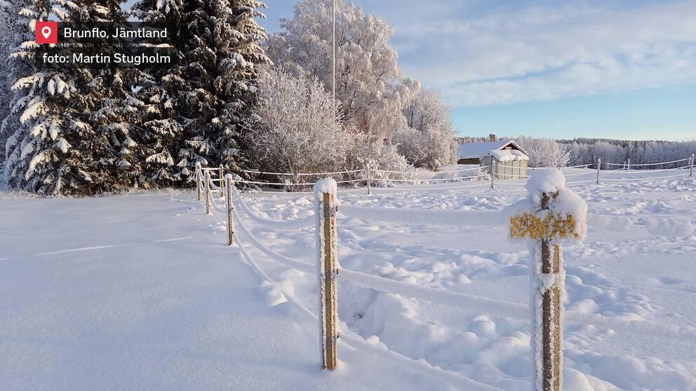 Vackert och kallt vinterlandskap i Brunflo i Jämtland den 9 januari.