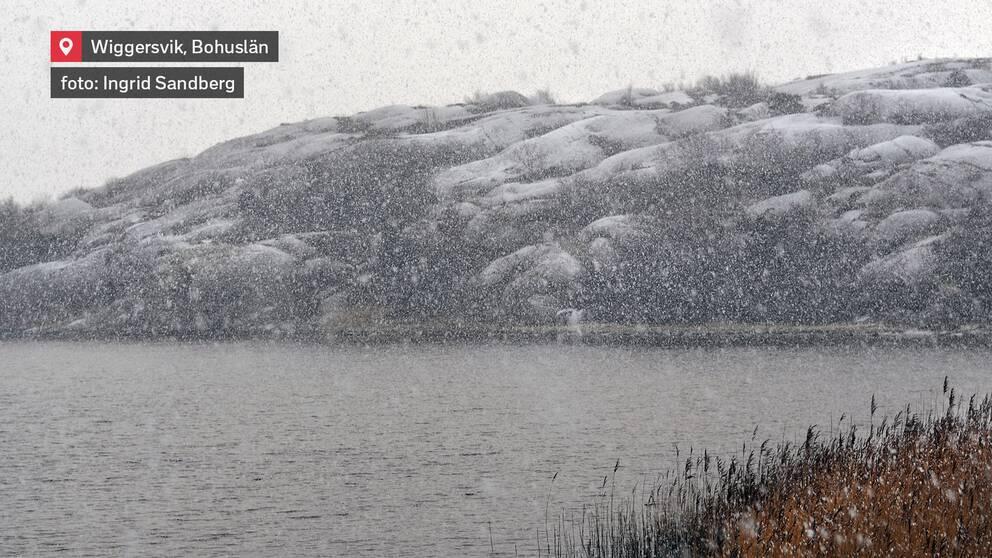 Snön vräker ner över Wiggersvik, Kungshamn i Bohuslän den 9 januari.