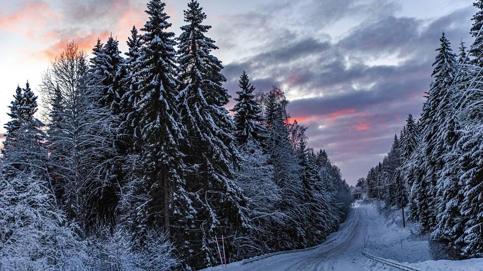 Solnedgång över Huljens vinterväg. Medelpad, den 10/12021.