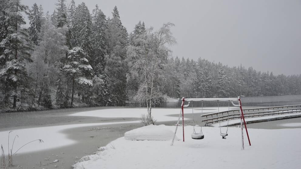 11.01. Det snöar på morgonen.Skene, Västergötland.
